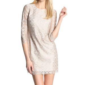 Cynthia Steffe Vida Metallic Lace Shift Dress